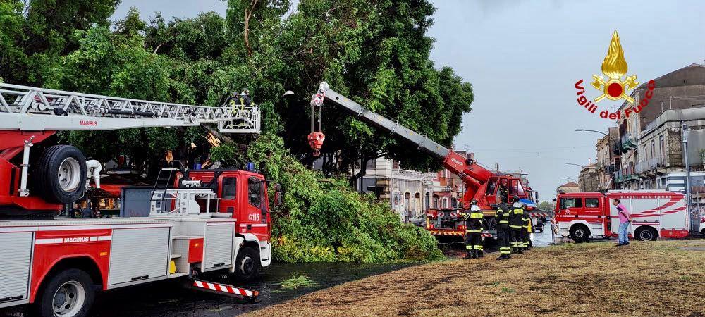 Tromba d'aria a Catania: alberi sradicati, ringhiere di balconi caduti. Le foto