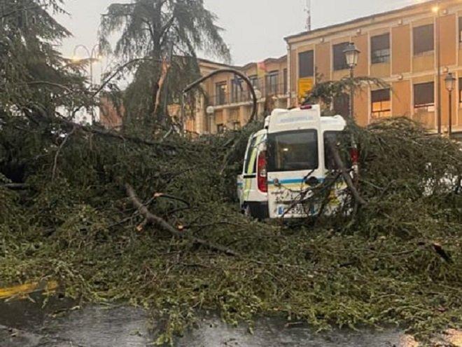 Tromba d'aria Nicolosi: albero distrugge mezzo disabili Misericordia